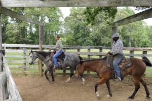 Texas Drought Tale Of Two Ranches