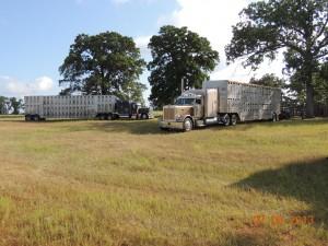 ATDF Truck2