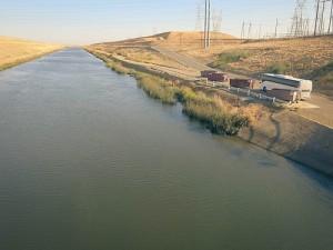 TALL Cali Water