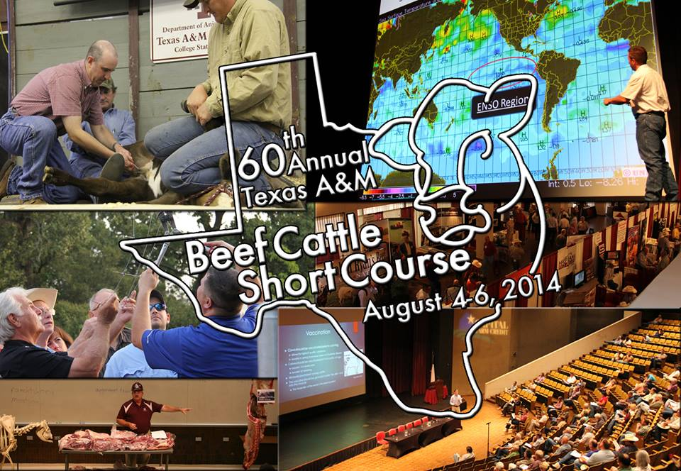 Beef Cattle Short Course Logo