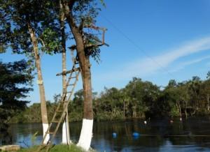 Rio das Mortes Landscape
