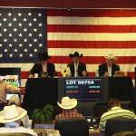 Superior Livestock Auctioneer