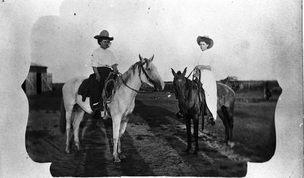 Texas_Cattle_Queens