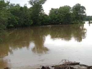 Rain water at ranch