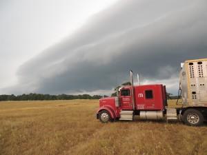 Storm over pasture
