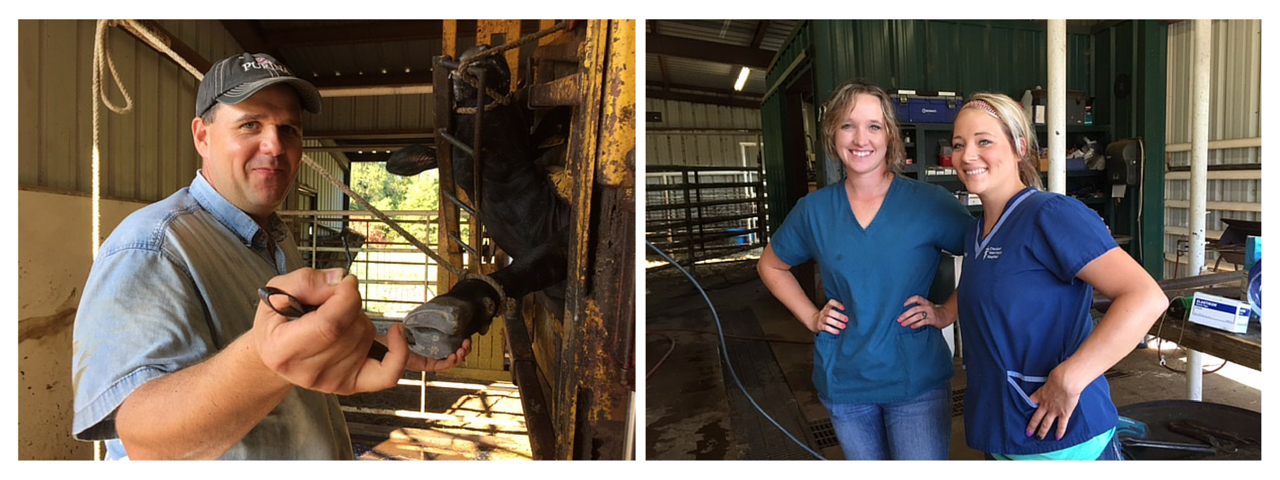 Dr. Wilson and Vet Assistants